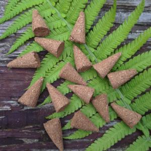 Wierook kegels Cones